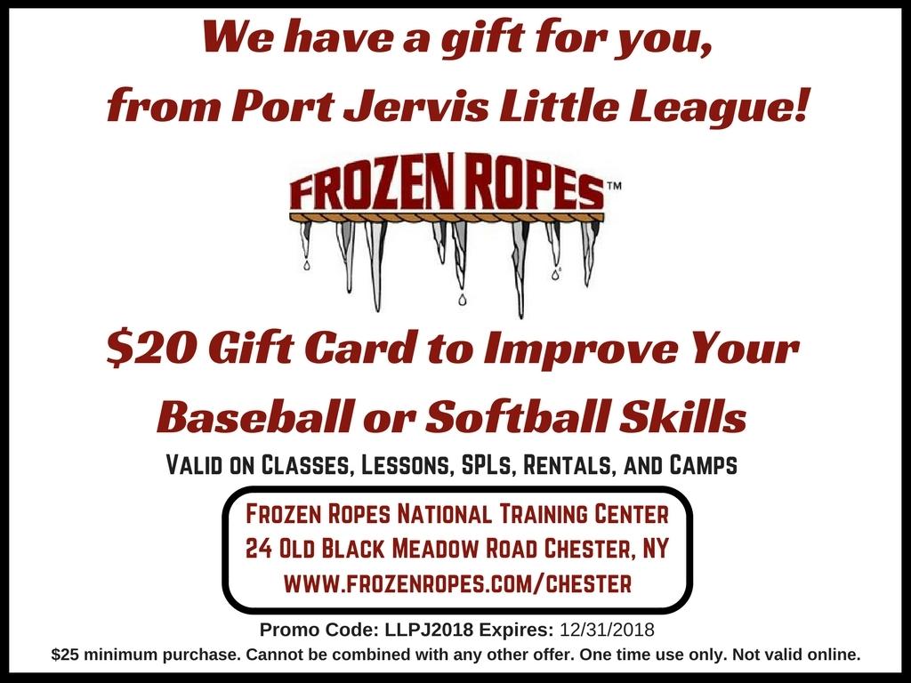 Port Jervis Little League 2018